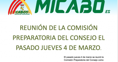 REUNIÓN DE LA COMISIÓN PREPARATORIA DEL CONSEJO EL PASADO JUEVES 4 DE MARZO